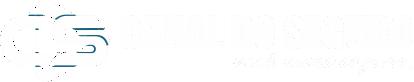 Canal do Seguro Logo